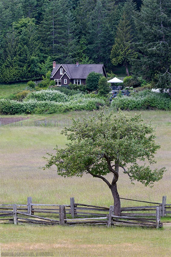 farmhouse and apple tree at ruckle provincial park