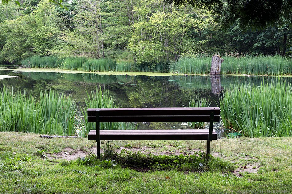park bench with view of mclean pond in campbell valley park