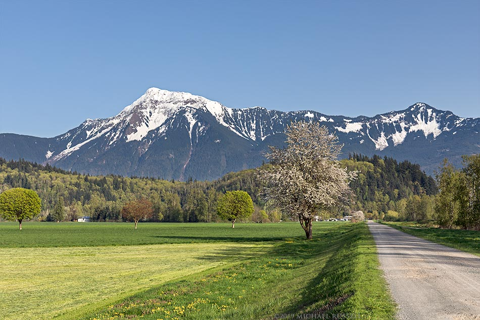 agassiz farmland and dike road near the fraser river with mount cheam