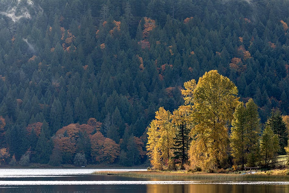 sunlight on fall foliage at st mary lake salt spring island